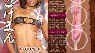 『J-HOLEこげまん ヴァネッサ』、今日のおすすめ『ちょいぽちゃ系新人女優 成宮優 AV DEBUT』